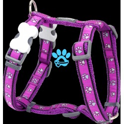 Red Dingo Harness